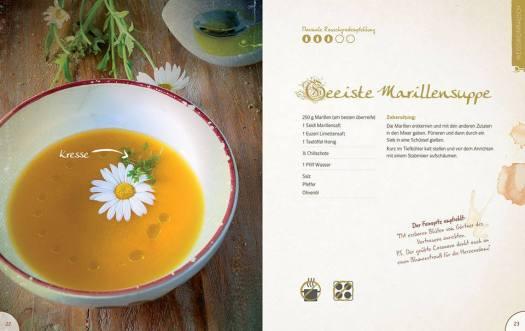 Rezept für geeiste Marillensuppe